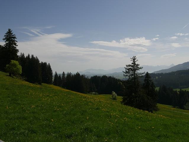 Blick vom Panoramaweg Oy-Mittelberg nach Süden