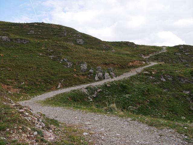 Weg vom Gunzesrieder Tal aufs Hochgrat