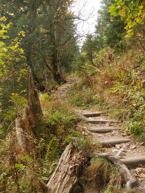 Stufenweg zum Grüntenhaus