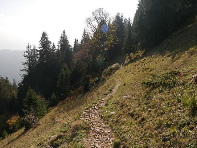 Wanderweg von der Alpe Zweifelgehren am Grünten