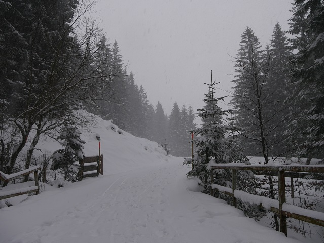 Winterwanderweg zur Kappeler Alp
