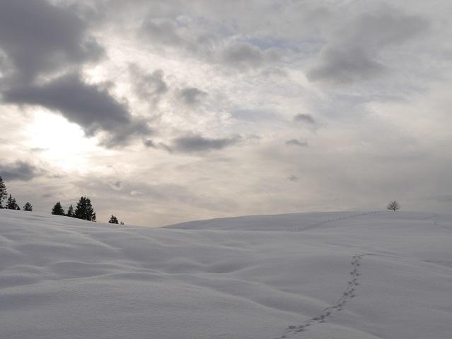 Winterlandschaft in den Allgäuer Alpen