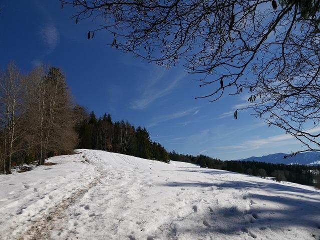 auf dem verschneiten Römerweg zum Auerberg