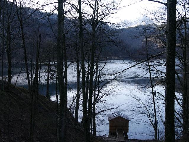 Alpsee von der Fürstenstraße aus im Winter