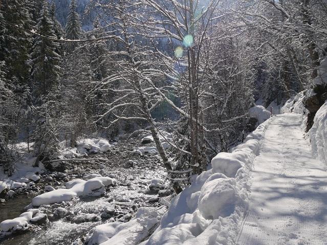 auf dem Breitachweg bei Mittelberg im Winter