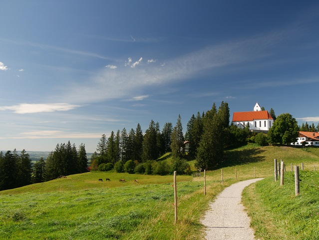 Blick vom Ende des Jägersteigs auf den Gipfel des Auerbergs