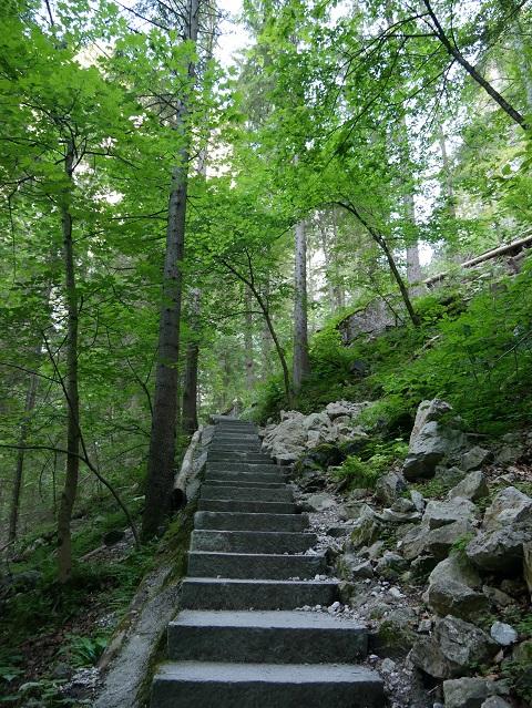Aufstieg aus der Pöllatschlucht zur Marienbrücke