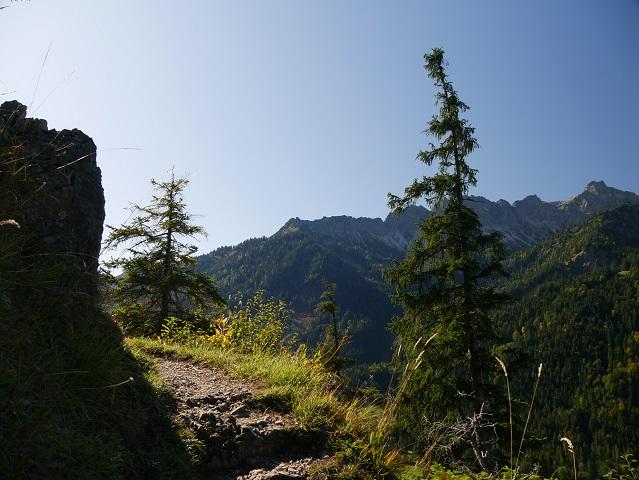 Aufstieg zum Aussichtspunkt Köpfle bei Hinterstein