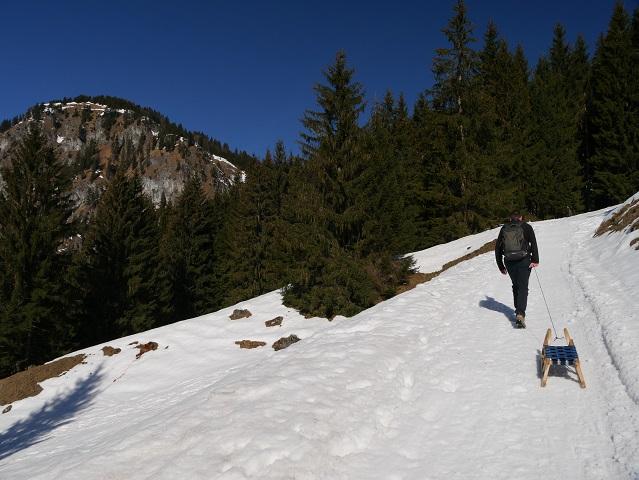 Schlittenfahren im Allgäu - Aufstieg zur Hirschalpe bei Bad Hindelang