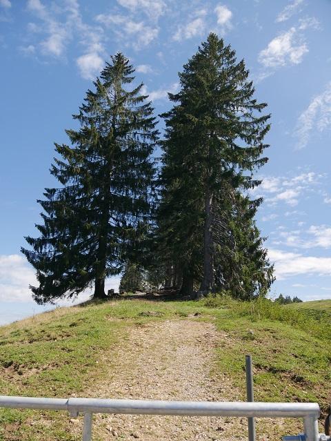 Gtawanderweg zur Thaler Höhe