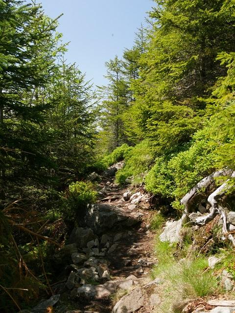 steiniger Bergwanderweg