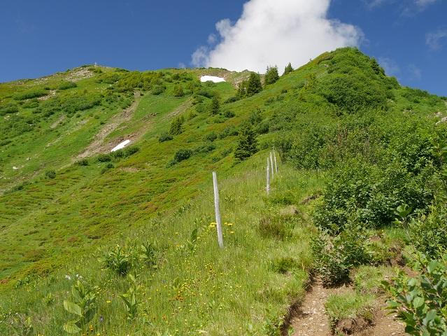 Bergtour aufs Steinmandl - Gipfel in Sicht