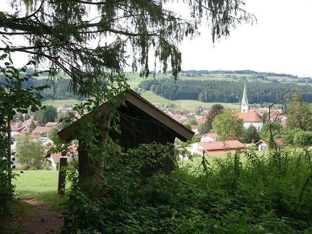 Blick vom Waldrand auf Weiler im Allgäu
