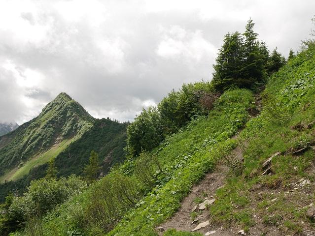 Bergtour aufs Steinmandl - Blick aufs Grünhorn
