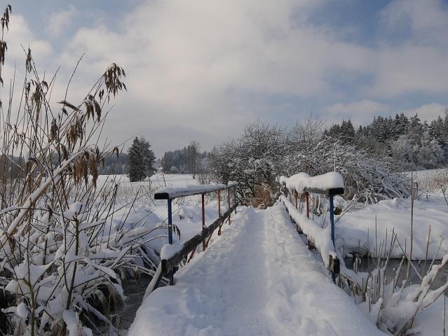 Elbseemoorbrücke im Winter