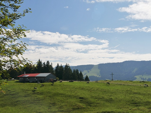 Gipfelkreuz an der Thaler Höhe