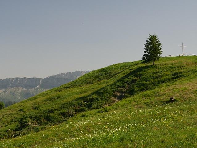 Gipfelkreuz auf dem Hochschelpen