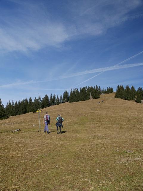 Bergsattel