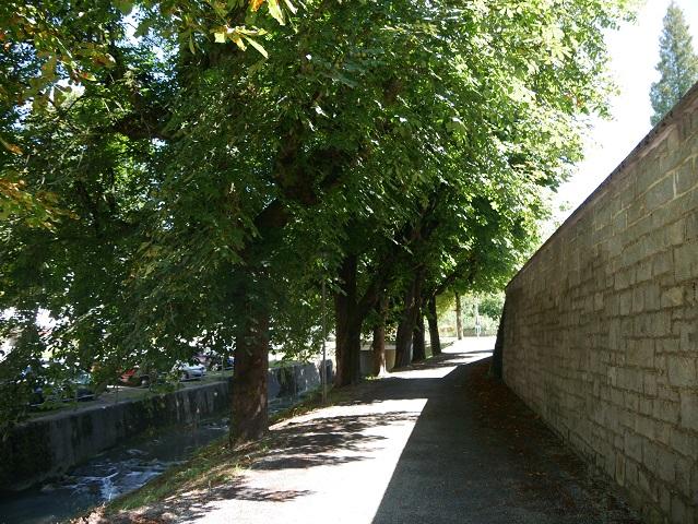 Der Hausbach in Weiler im Allgäu