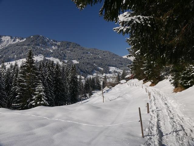 auf dem Höfle-Weg im Wildental im Winter
