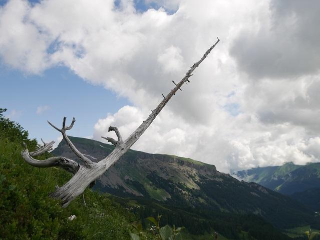 Blick auf dem Hohen Ifen bei der Bergtour aufs Steinmandl