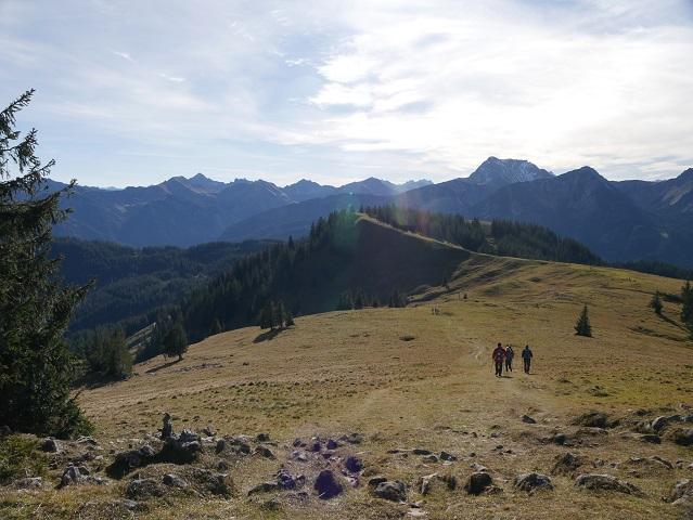 Blick auf den Pirschling-Gipfel