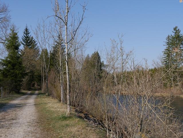 Radweg an der Wertach