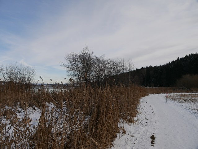 Niso-Rundweg im Winter