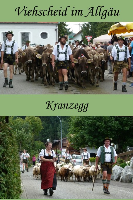 Viehscheid Kranzegg im Allgäu