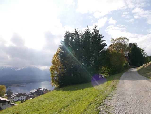 Wanderweg von Enzensberg zur Burgruine Hopfen