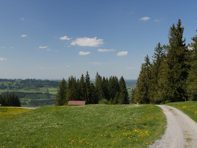 Weg von der Alpe Blösse zum Rundweg Reuterwanne