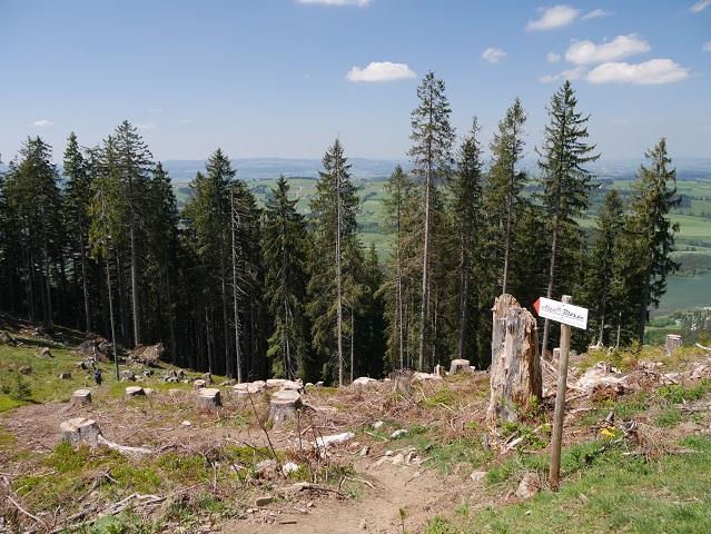 Wanderweg zur Alpe Blösse
