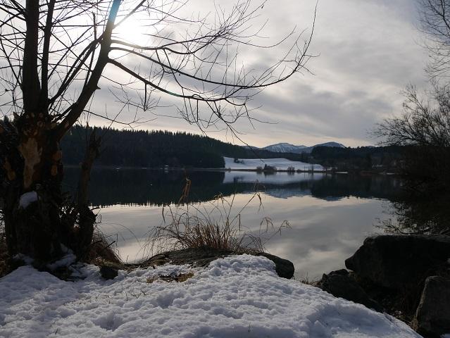 Am Niedersonthofener See im Winter