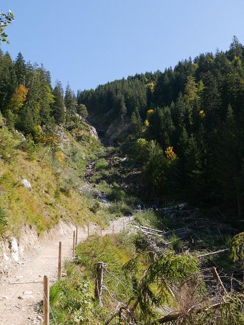 am Willersbach im Hintersteiner Tal