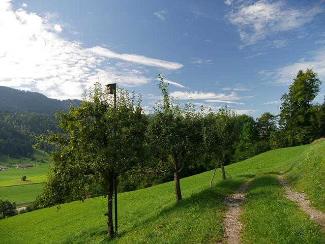 auf dem Weg von Ratholz zur Alpe Schneidberg