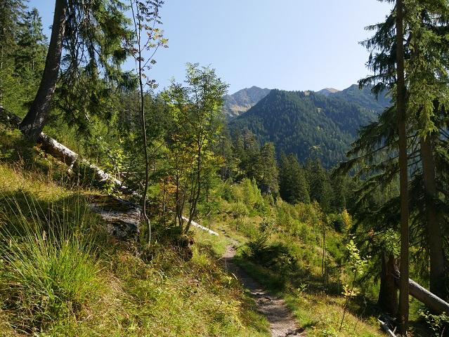 auf dem Weg zum Wildfräuleinstein im Hintersteiner Tal