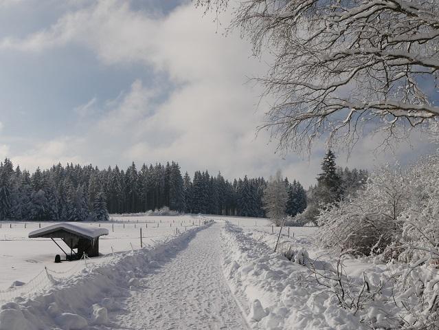 auf dem Weg zur Seealpe im Winter
