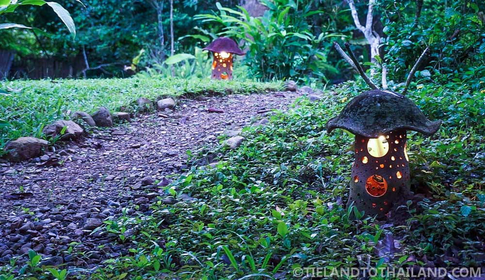 Chiang Dao Nest 1 Glowing Mushroom Lanterns