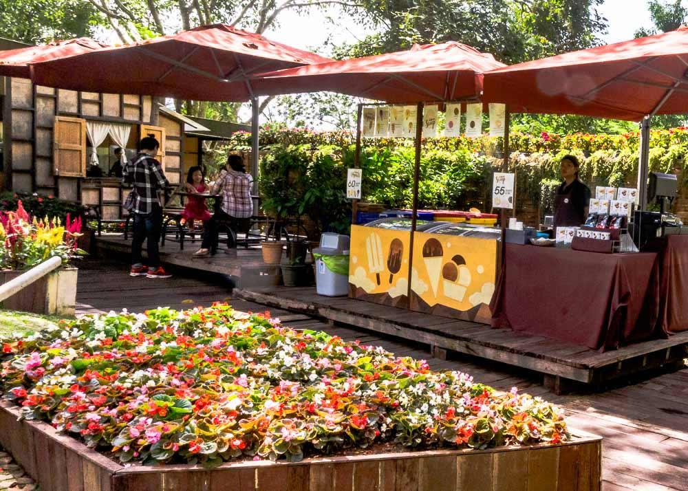 Doi Tung Cafe in Mae Fah Luang Garden