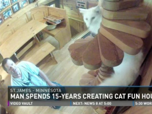 Greg Krueger crea un parque para sus gatos en su casa