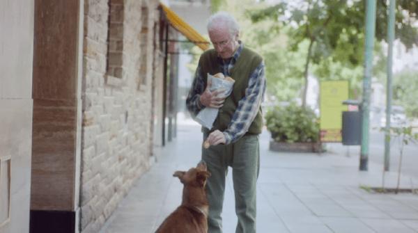 hombre y el perro