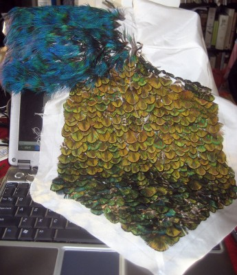 partly finished front of my peacock feather tutu