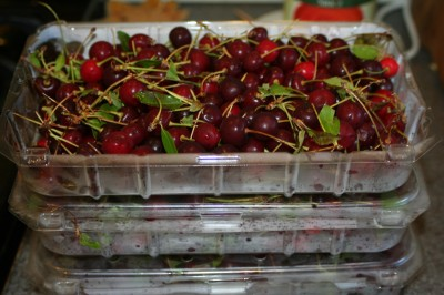 6 pounds of sour cherries