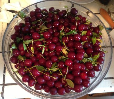 six pounds of sour cherries!