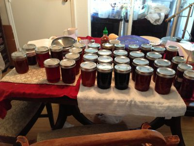 31 pints of jam, marmalade, and jelly!