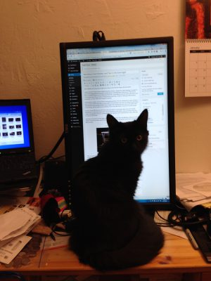 Fritz, helpfully sitting in front of my monitor