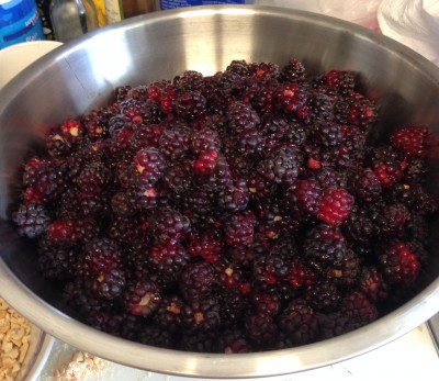 delicious boysenberries!