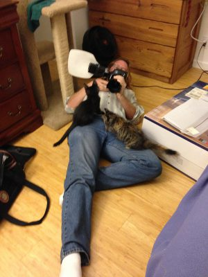 October 3 - kittens attacking the photographer!