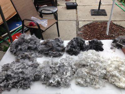 A value scale - in fleece!