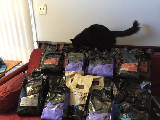 138 pounds of chocolate - cat added for scale